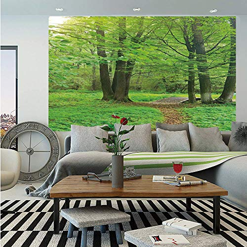 Nature Huge Photo Wall Mural,Summer Season Forest with Flourishing Trees Grass and Pathway Tranquil Scenery,Self-Adhesive Large Wallpaper for Home Decor 100x144 inches,Fern Green Brown