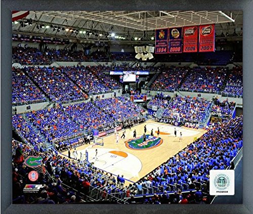 Stephen C. O'Connell Center Florida Gators NCAA Photo (Size: 17