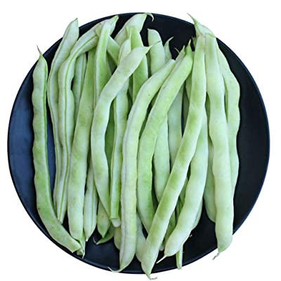 Chinese White Pole Bean 35g Asian Chinese BaiBuLao LaoLaiShao Haricot Garden Seeds for Planting 白不老 老来少架豆 白架豆 芸豆 白四季豆种子 : Garden & Outdoor