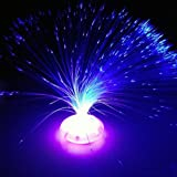 Decorazione domestica di festa variopinta della luce di notte della lampada di fiore della fibra ottica della fibra