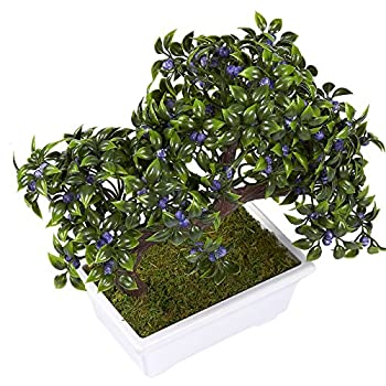 Artificial Bonsai Tree - Fake Plant Decoration, Potted Artificial House Plants for Home DecorIndoor, Ficus Bonsai Tree Plant for Decoration, Desktop Display, Zen Garden Decor- 10 x 6 x 8 Inches