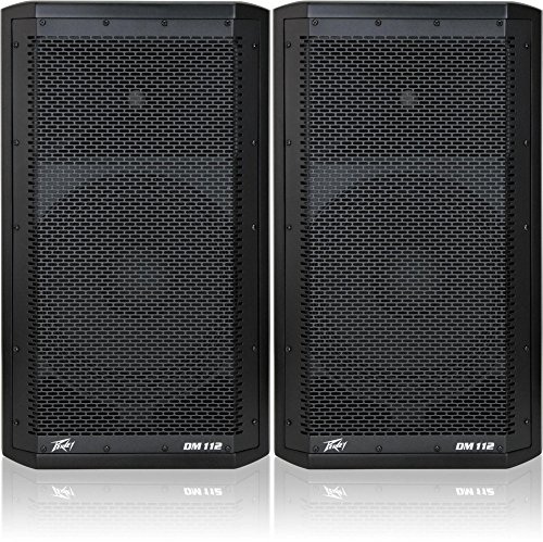 - Peavey Dark Matter DM 112 Powered Speaker Pair