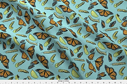 Spoonflower Monarch Butterflies Fabric - Monarch Butterflies Caterpillars Insects Entomology Cocoon Chrysalis Bugs - by Landpenguin Printed on Eco Canvas Fabric by The Yard