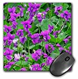 Sandy Mertens Flower Designs - Wood Violets - MousePad (mp_6280_1)