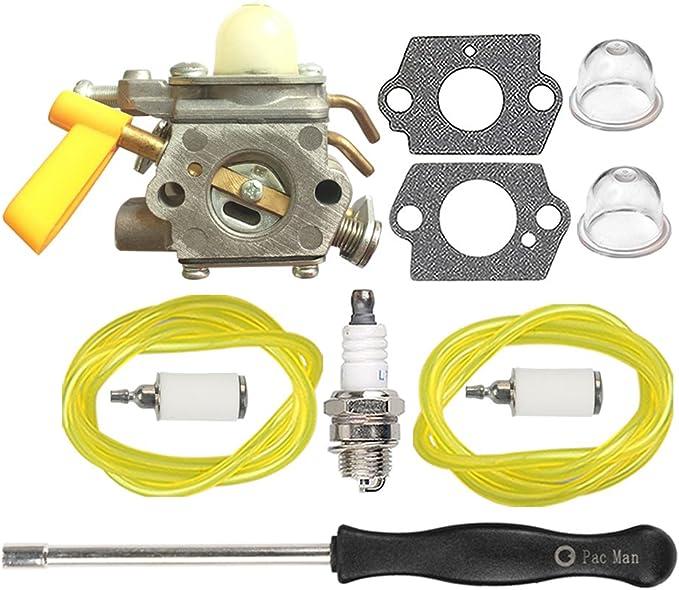 Amazon.com: HIPA 308054013 carburador con Tune Up Kit para ...