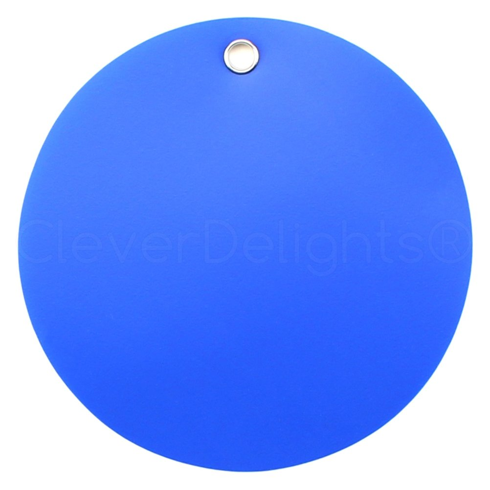 100 Pack - CleverDelights Blue Plastic Tags - 2'' Round - Tear-Proof and Waterproof - Inventory Asset Identification Price Tags