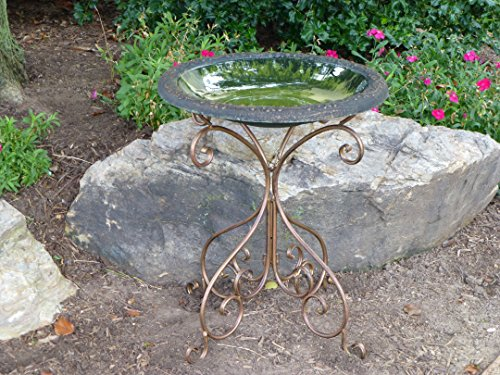 Tierra Garden 4 8184t Gloss Bird Bath Bowl With Matte Rim