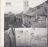 Nando. Tele e disegni by  Luigi Ferdinando. Venezia, 1912) NANDO (Pierluca in stock, buy online here