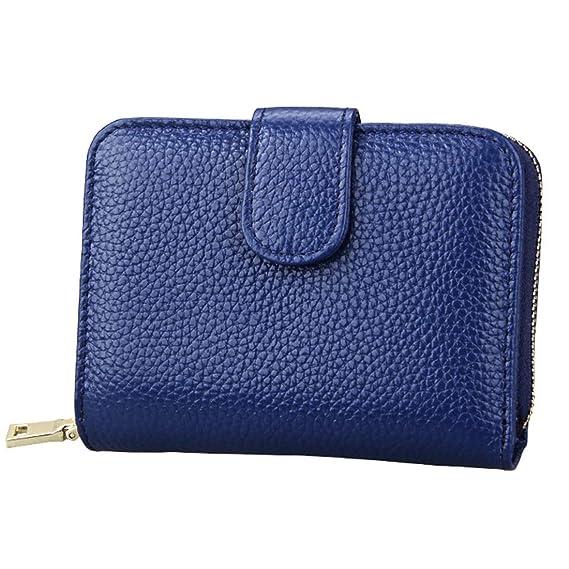 YKDY - Cartera para Mujer, Azul (Azul) - YKDY-Wallet: Amazon ...