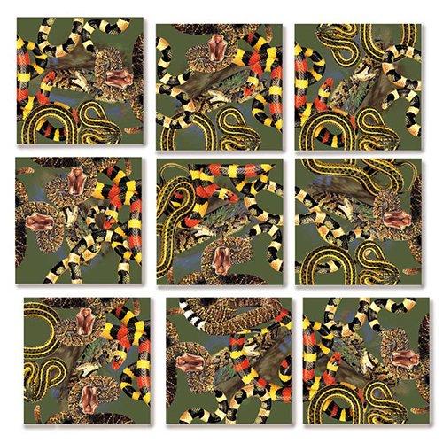 - B Dazzle Snakes Scramble Squares 9 Piece Puzzle