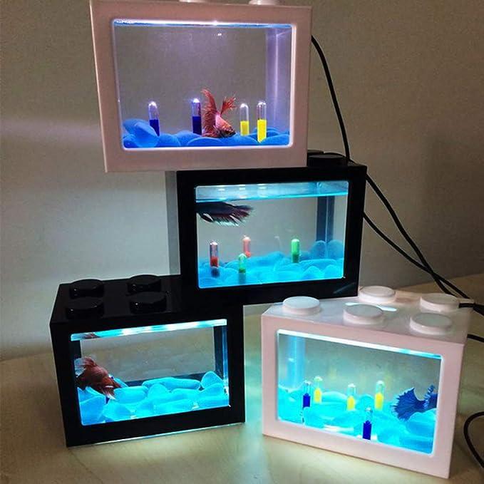 Amazon.com : Aixia USB Mini Aquarium Fish Tank with LED Lamp Light Betta Fish Fighting Cylinder (Black) : Pet Supplies