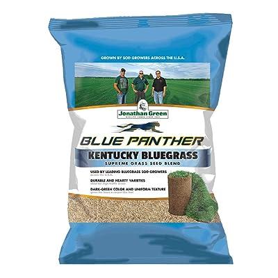 Jonathan 11980 Green Sod Maker Grass Seed, 25-Pound : Grass Plants : Garden & Outdoor