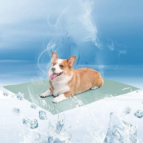 WISFORBEST Alfombrilla de Refrigeración para Mascotas Cama ...