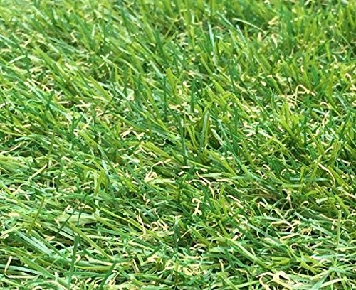 2m x 1.5m Berlin 26mm Pile Height Artificial Grass | Natural & Realistic Looking Astro Garden Lawn | 4 ft 11 Inch x 6 ft…