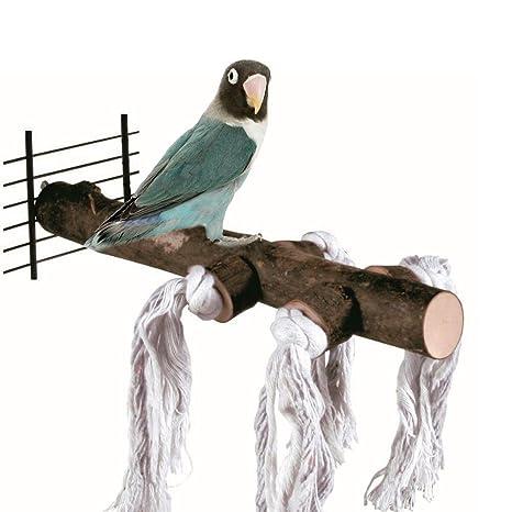 ASOCEA Jaula de Madera Natural para Pájaros de pie para Loros y ...