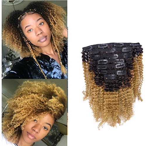 Beauty : Anrosa Natural Curly Clip in Hair Extensions Human Hair Afro Kinky Curly Clip ins Virgin Brazilian Hair Extensions for African American Black Women 3C 4A 4B 4C Afro Hair Ombre Blonde 120g 20 Inch