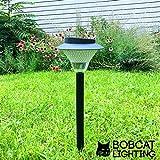 Bobcat Lighting LED Solar Path Light 60