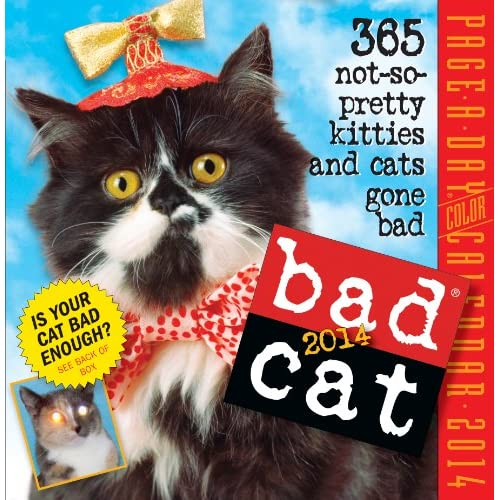Bad Cat 2014 Page-A-Day Calendar (Calendar)
