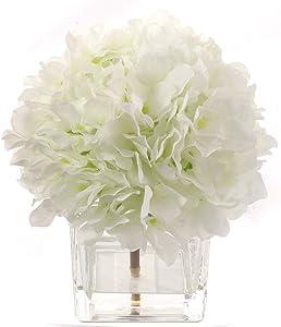 Cream White Hydrangea Flower Bush Arrangement, Decorative Square Vase, Faux Water Look, Scratch Resistant Glass,, Home & Office Decor