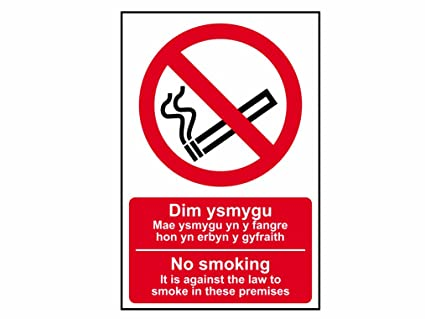 Amazon.com: Scan 0578 PVC 200 x 300mm No Smoking English ...
