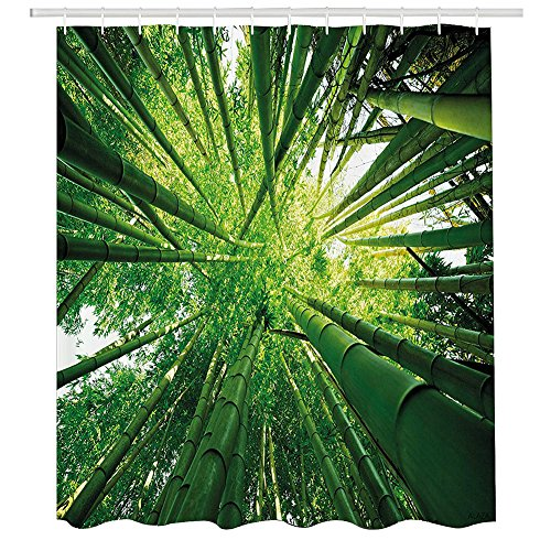 Nature Shower Curtain,Upward Bamboo Stems in Jungle Rainforest Exotic Lush Tree Woodland Shadows Picture,Fabric Bathroom Decor Set with Hooks,60 by 72 Inches,Hunter Green