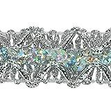 Expo International Sheba Diamond Sequin Braid Trim Embellishment, 20-Yard, Silver