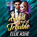 A Good Kind of Trouble: A Trouble in Twin Rivers Novel, Book 1 Audiobook by Ellie Ashe Narrated by Denice Stradling