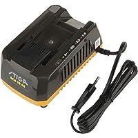 Stiga Batterie Chargeur standard SCG 48AE, 1pièce, 270480028/S15