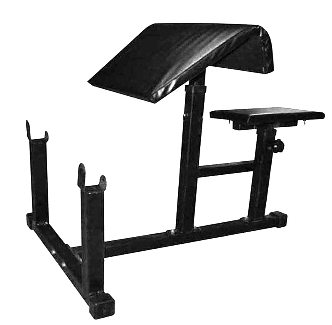 Protoner Preacher curl bench with adjustable seat level