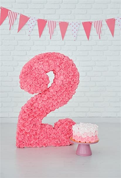 Amazon OFILA Baby Girl 2nd Birthday Backdrop 3x5ft Cake Smash