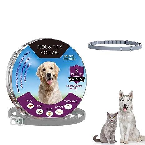 Aiwer Collar de pulgas y garrapatas para Perros y Gatos ...