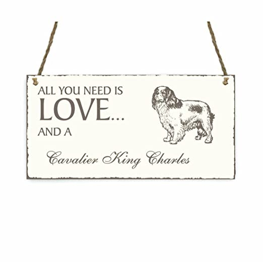 Placa decorativa, « All You Need is Love And A Cavalier King ...