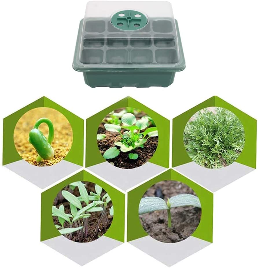 PPNZQAUT 5 Sets Seed Starting Kit Seedling Starter Trays 60 Cells Garden Seed Starter Trays Humidity Adjustable Seed Germination Trays with Dome and Base Greenhouse Seed Starting Trays