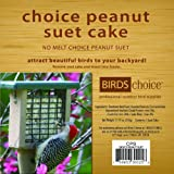 Birds Choice Peanut Suet Cake 11.75 oz., Case of 12
