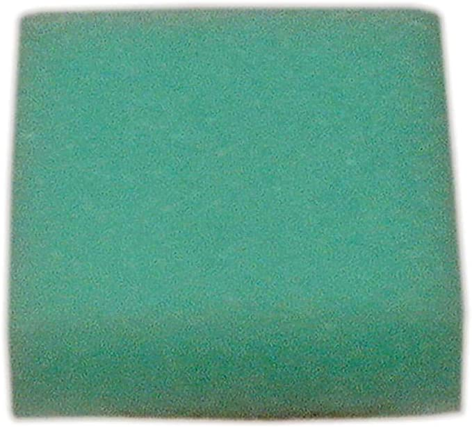 Homelite Air Cleaner Filter HM02500 OEM B