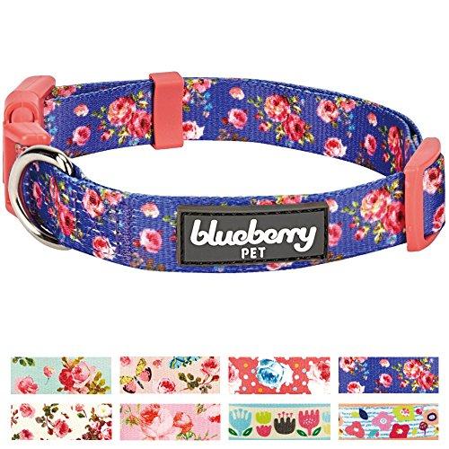 Medium Rose (Blueberry Pet New 8 Patterns Spring Scent Inspired Rose Print Irish Blue Dog Collar, Medium, Neck 14.5