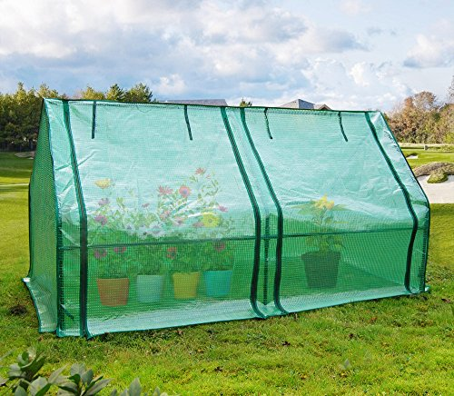 Quictent Upgraded Large Door Portable Mini Greenhouse Green Garden Hot House Grow Tent More Size (71″WX 36″D X 36″H PE Cover)
