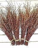 150 Birch twigs - 3 bundles. white birch branches, Centerpieces.Thin birch branches.birch branches for decoration, Decorative branches (3x50pcs bundles)