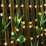 Led flower fairy lights,22ft 50 Led Blossom Solar Fairy Lights Solar Flower String Lights for Outdoor,Garden, Patio(Warm White)