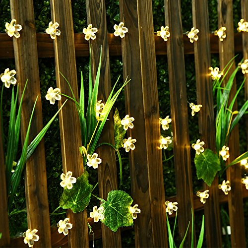 Led flower fairy lights,22ft 50 Led Blossom Solar Fairy Lights Solar Flower String Lights for Outdoor,Garden, Patio(Warm - Flower Box Gazebo