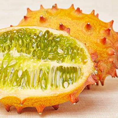 HOTUEEN 30Pcs Cucumis Metuliferus Heirloom African Horned Melon Seeds Fruits : Garden & Outdoor