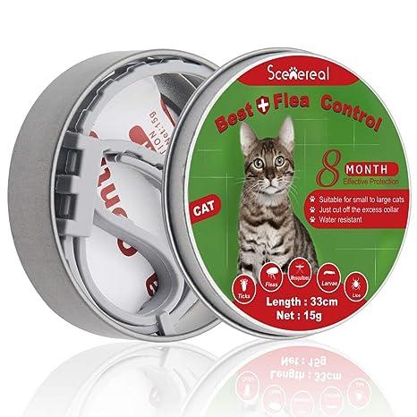 SCENEREAL Collar de pulgas y garrapatas para Gatos, protección de 8 Meses, Ajustable para Gatos y Cachorros, Mascotas pequeñas