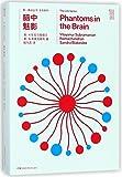 第一推动丛书·生命系列:脑中魅影