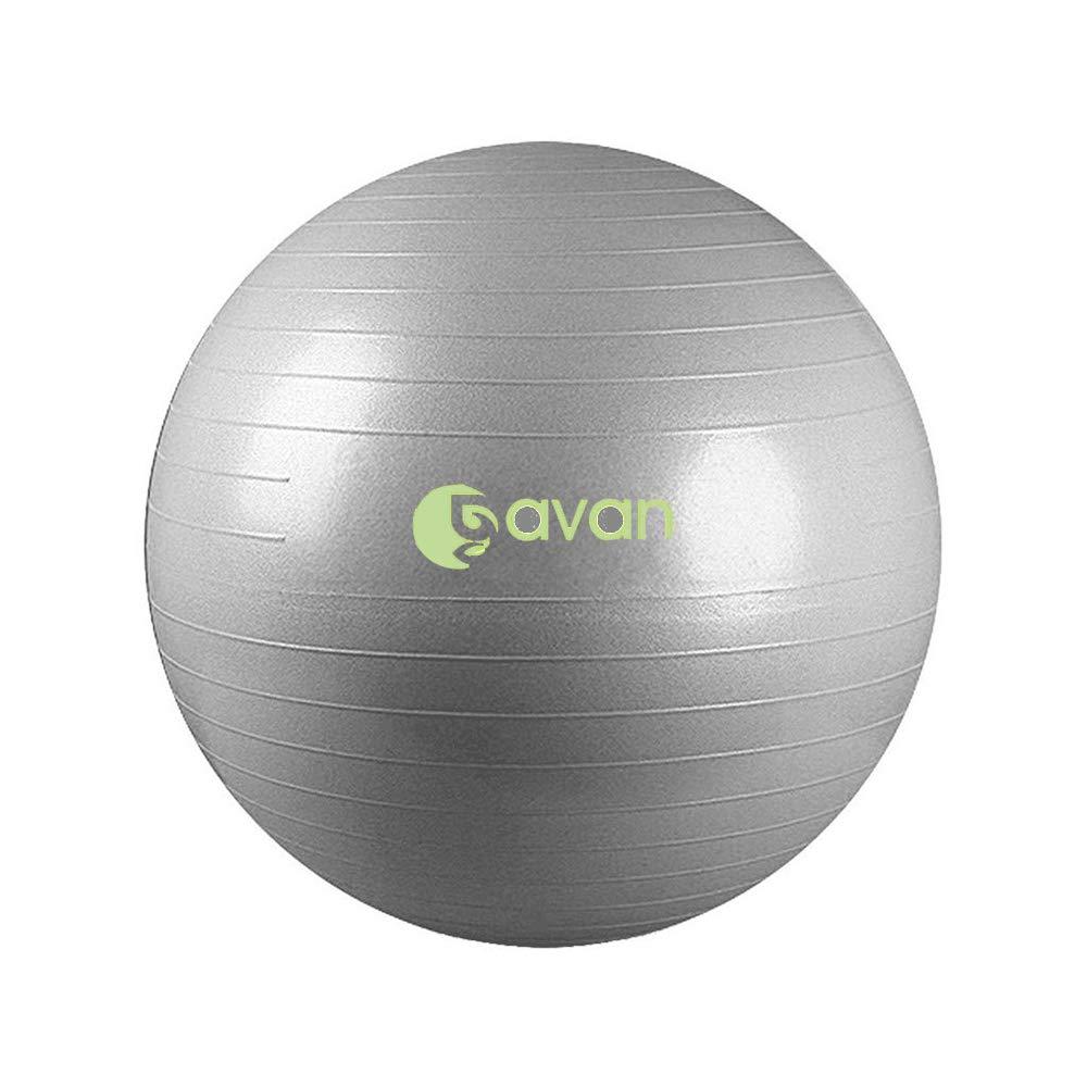 GAVAN 65cm Exercise Ball, for Fitness, Stability, Balance & Yoga - 2000LBS Anti Burst Professional Quality Design, Gray by GAVAN