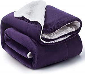 BEDSURE Sherpa Fleece Blanket Throw Size Purple Plush Throw Blanket Fuzzy Soft Blanket Microfiber