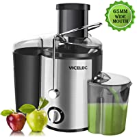 Juicer Extractor - Professional Dual Speed Wide Mouth Fruits and Vegetable Juicer Machines with Juice Jug, 600w Stainless Steel Centrifugal Juicer BPA Free