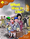 Oxford Reading Tree: Stage 8: More Storybooks (Magic Key): What Was It Like?