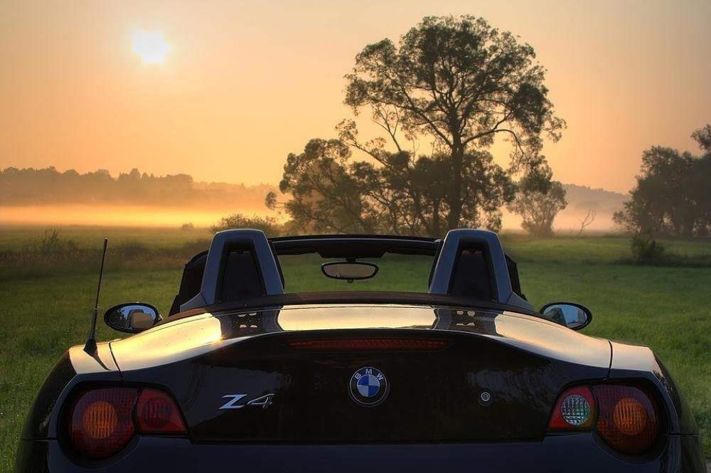 Gifts Delight Laminated 36x24 inches Poster: BMW Z4 E85 Roadster Sunrise Pkw Open Rear Vehicle Car