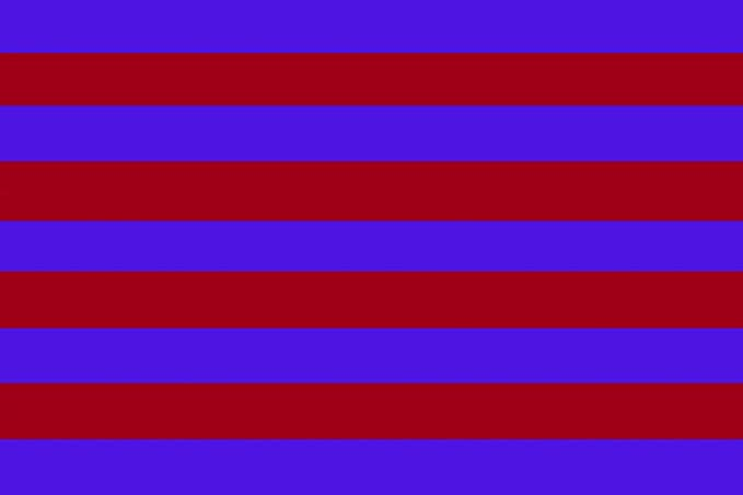 Gran Bandera de Barsa 150 x 90 cm Satén Durabol  Amazon.es  Deportes y aire  libre d8dbcc816ca
