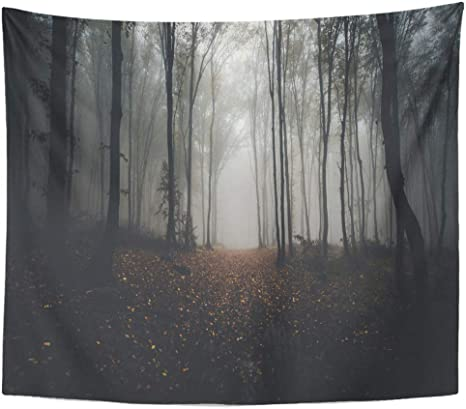 Emvency Wall Tapestry Orange Woods Road Through Forest In Autumn Blue Dark Scary Night Halloween Fantasy Horror Leaf Decor Wall Hanging Picnic Bedsheet Blanket 60x50 Inches Home Kitchen